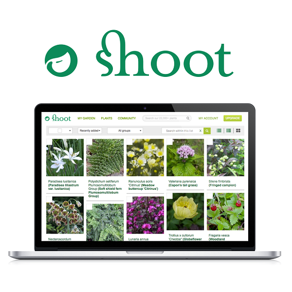 Shoot training onsite at Provender Nurseries - Provender ...