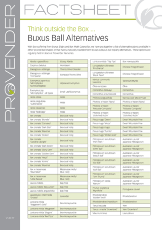Buxus Ball Alternatives